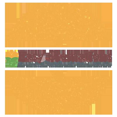 logo easy cremations